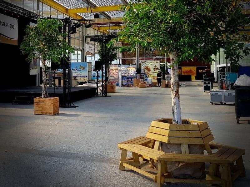 Nitida boom huren met boombank voor uw evenement
